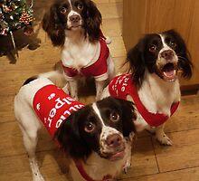 Santa's Little Helpers by Ryan Davison Crisp