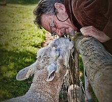 I Luv Ewe by Barb Leopold