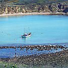 Lulworth Cove,Dorset by naturelover