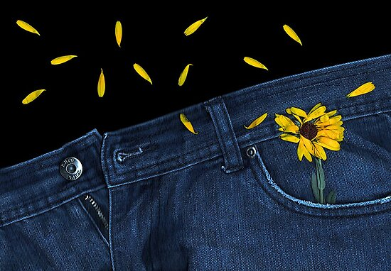 """""""Blue Jeans and Calendula"""" by Michelle Lee Willsmore"""