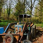Abandoned tractor, Tintern Abbey, Saltmills, County Wexford, Ireland by Andrew Jones