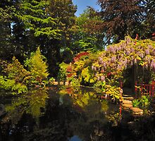 Japanese Garden At Compton Acres,  Spring Joy by delros