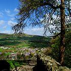 Castleton from Peveril Castle by Audrey Clarke