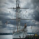 Tall masted schooner in Halifax Harbor by Randall Nyhof