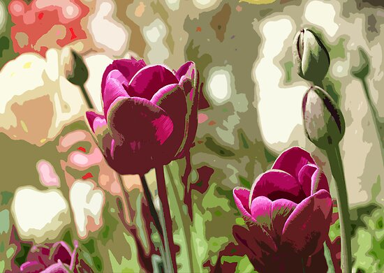 Tulips by Aase