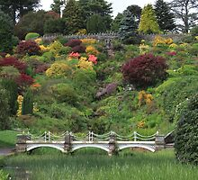 Alton Towers Gardens by TonyGeary
