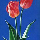 Two Tulips by Janice Dunbar