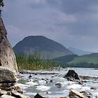Loweswater Fell by Paul  Green