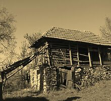 An Ancient Barn in the Village of Barda, Romania in sepia by Dennis Melling