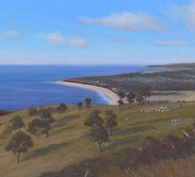 Fleurieu Peninsula Vista by Leigh Rust