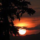 Kenyan sunset by Jack  Castle