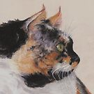Calico Cat  by Pam Humbargar