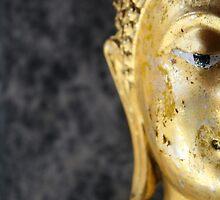 Buddha by Christophe Besson