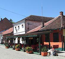 Tesnjar - Old city by branko stanic