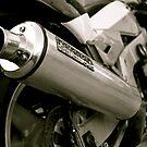 Kawasaki ZXR 750 by Lou Wilson