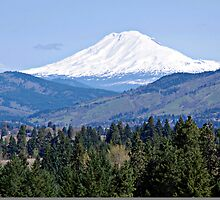 Mt. Adams Washington State by Don Siebel