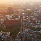 Berlin from Fernsehturm by Noukka Signe