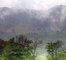 Lingmoor Fell by Paul  Green