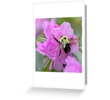 Bumble Bee - Pink Azalea Greeting Card