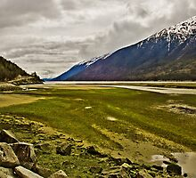 Lynn Canal at Low Tide by Yukondick