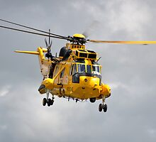 Rescue 169 by imageworld