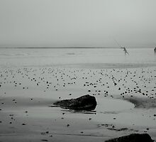 Shore Fishing by Paul Finnegan