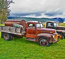 Out to Pasture 3 by Bryan D. Spellman