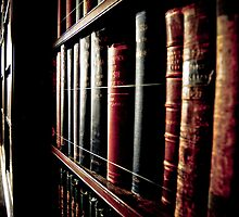 Library in Cragside Hall by DeePhoto