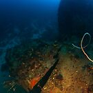 Stern of the Windjammer, Bonaire by Rich Synowiec