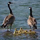 Family portrait at Lake Coeur d&#x27;Alene by Kate Farkas