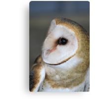 "Barn Owl - ""Casper"" Canvas Print"