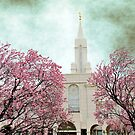 Bountiful LDS Temple - Spring by Ryan Houston