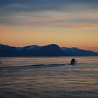 Evening in Molde by julie08