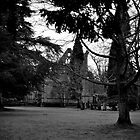 Abbey Through the Trees by Tiffany Dryburgh