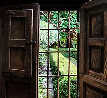 Yengo Garden Window - Mt Wilson NSW Australia by Bev Woodman