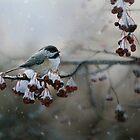 """WINTER FREEZE"" by Robin Edward Thorne Murray,AFC"