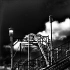 The Rollercoaster by Ladymoose