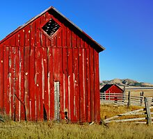 Western Red by Dawn Crouse