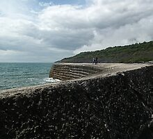 Walk Along The Harbour Wall by lynn carter