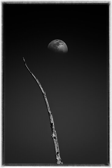 Earth and Moon by Cliff Worsham