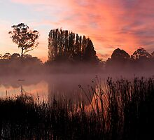 Gosling Creek at sunrise by Edith Gowing