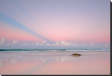 Twilight on the Coast - Miami Beach Qld by Beth  Wode