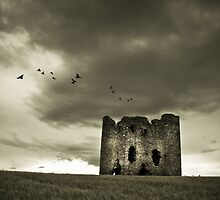 Burt Castle by Neil Carey