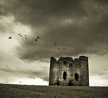 Burt Castle by Neil Carey