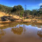 Reflections In Time - Hill End , NSW Australia - The HDR Experience by Philip Johnson