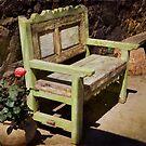 Green Bench - Sayulita, Mexico by Lynnette Peizer