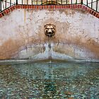 Lion head fountain by Robby Ticknor