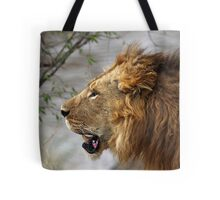 Profile Portrait, Large Male Lion, Maasai Mara, Kenya Tote Bag