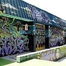 Carroll Skate Park 2 by Darlene Bayne