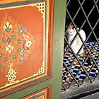 Window Cat - Marrakech, Morocco by Paul  Kelly